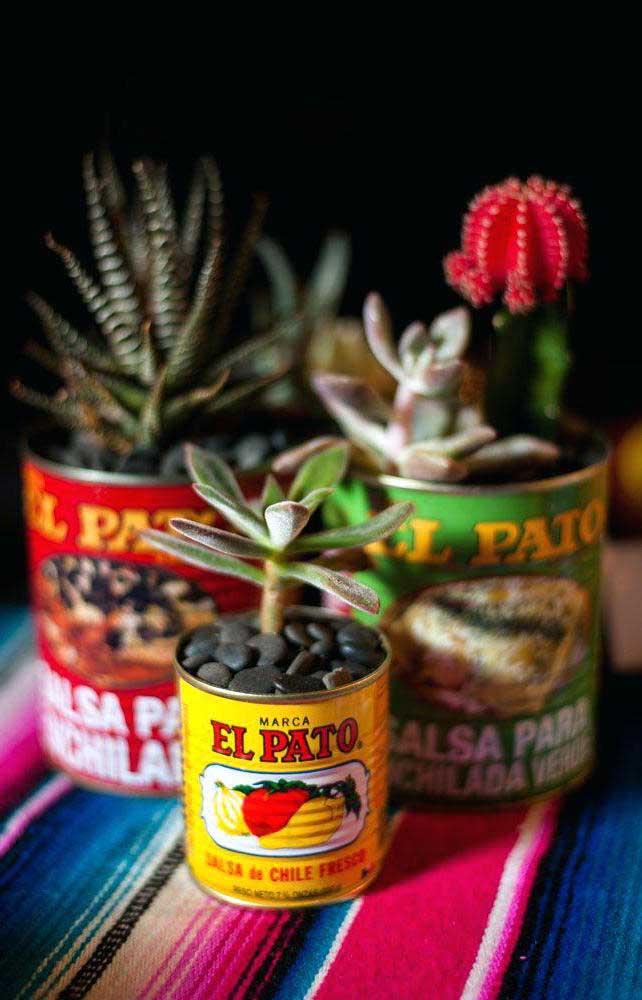 Se não tem vaso, aproveite algumas latas que não usa mais para colocar as mini suculentas dentro delas.