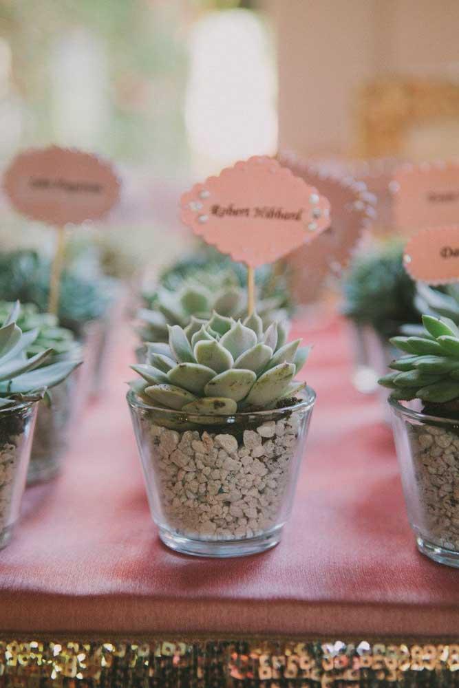 Olha que mimo essas mini suculentas em copos transparentes. Ótima opção para presentear as pessoas especiais da sua vida.