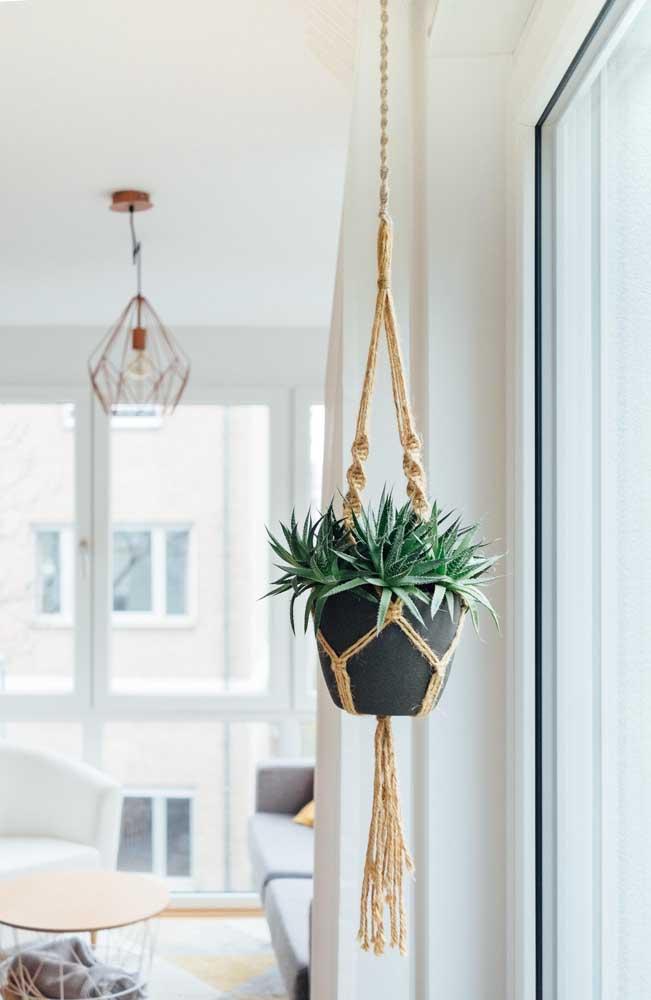 Você pode usar materiais artesanais para colocar suculentas pendentes.