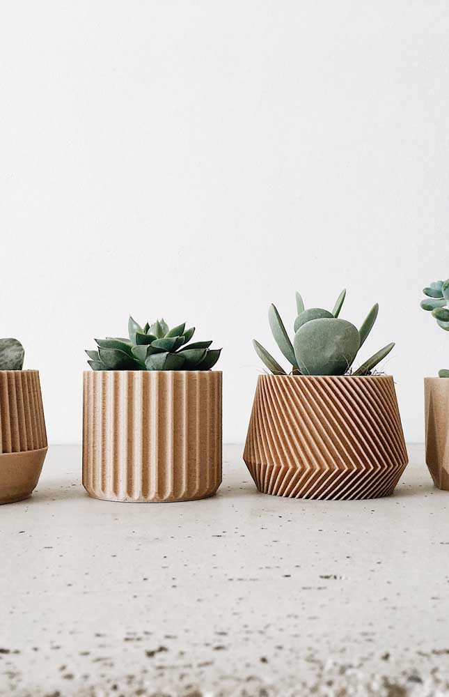 Olha esses modelos de vasos diferentes, modernos e luxuosos para colocar as suculentas.