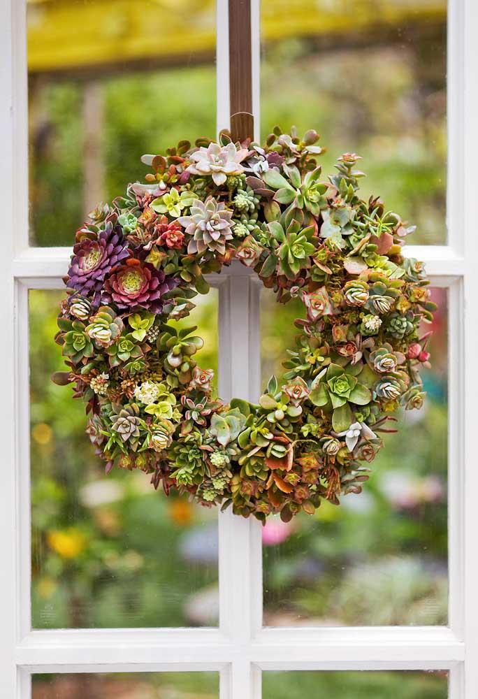 Sabia que dá para fazer uma bela guirlanda com várias espécies de suculentas? Ótima opção para pendurar na porta da sua casa.
