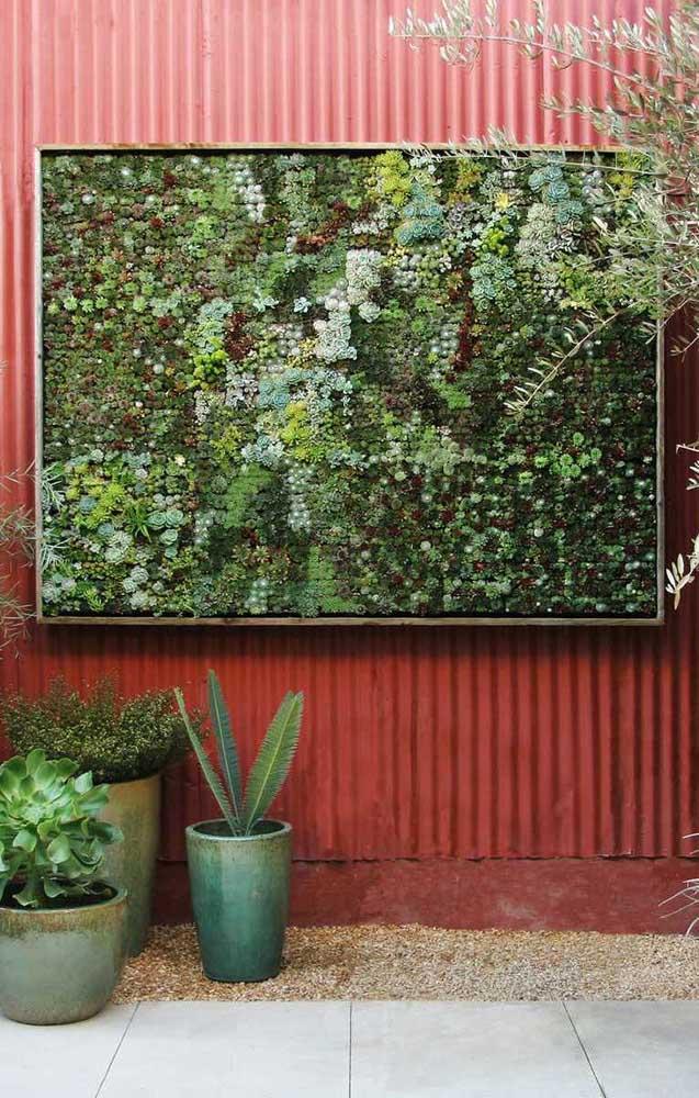 Já pensou em criar um painel como esse cheio de plantas diferentes?