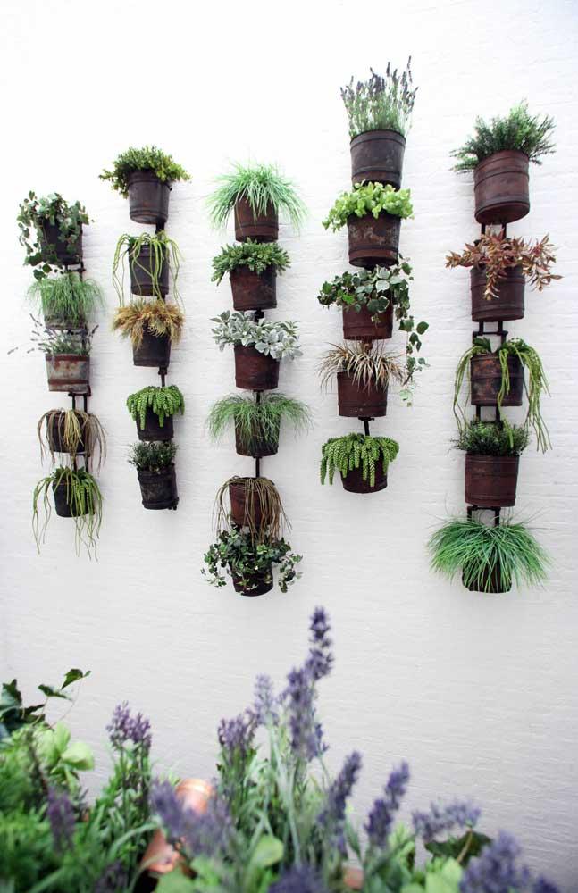 Que tal fazer um jardim vertical com suculentas? É só colocar várias espécies dentro de vasos suspensos.