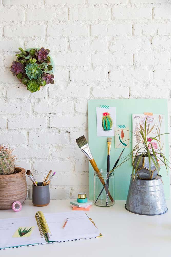 Escolha suculentas coloridas para decorar seu espaço de trabalho e ajudá-lo a ter mais criatividade.