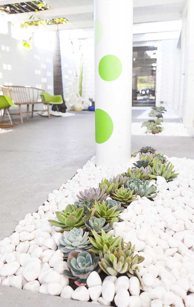 Olha que jardim de suculentas muito bem decorado com pedras e suculentas no formato de flor.