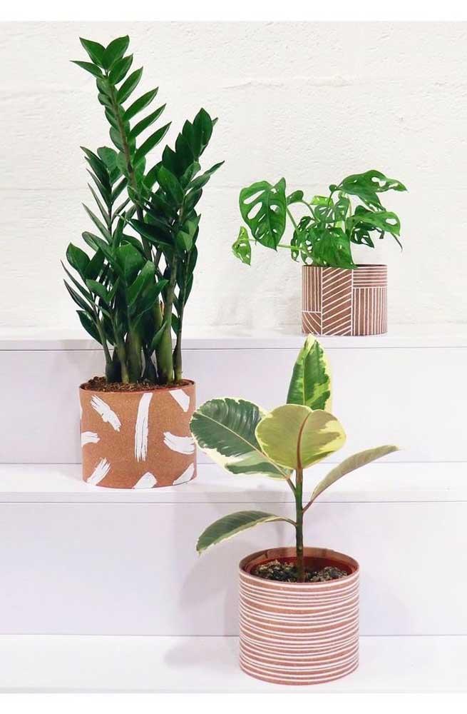 Plantas nos degraus da escada, entre elas a zamioculcas
