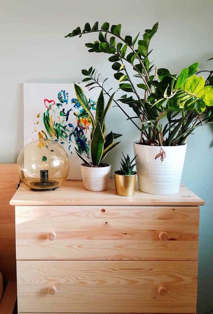 Não sabe como decorar a cômoda do quarto? Experimente alguns vasos de plantas sobre ela, como a zamioculcas, por exemplo