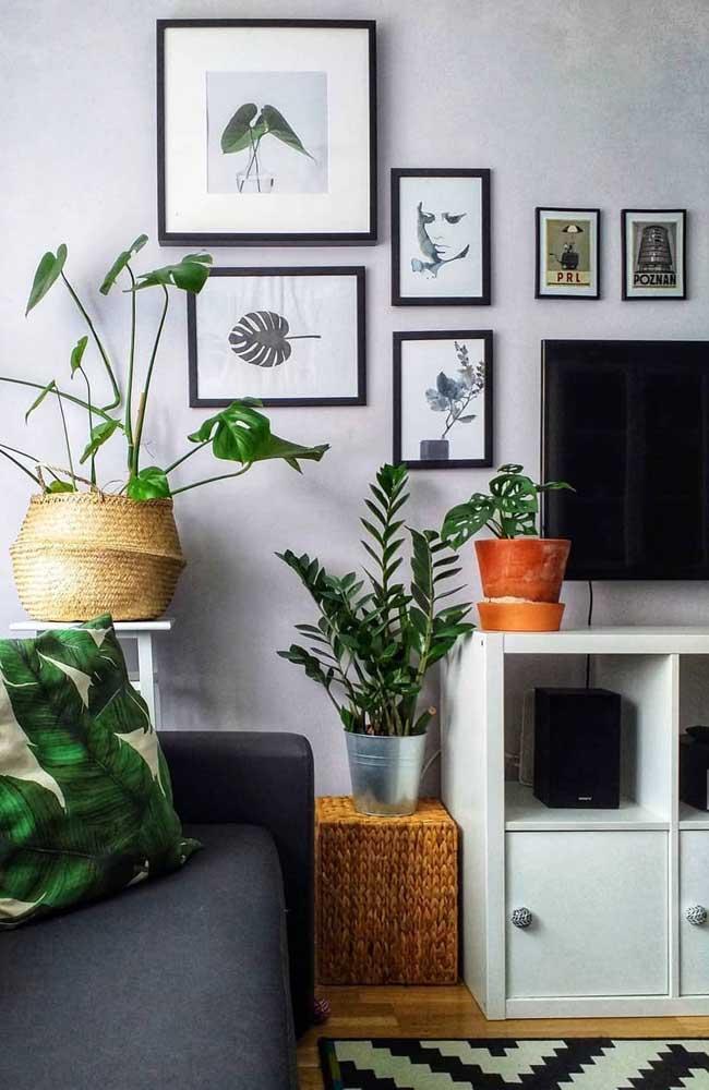 Decorar com plantas nunca é demais, elas podem vir de modo natural ou, ainda, em quadros e almofadas