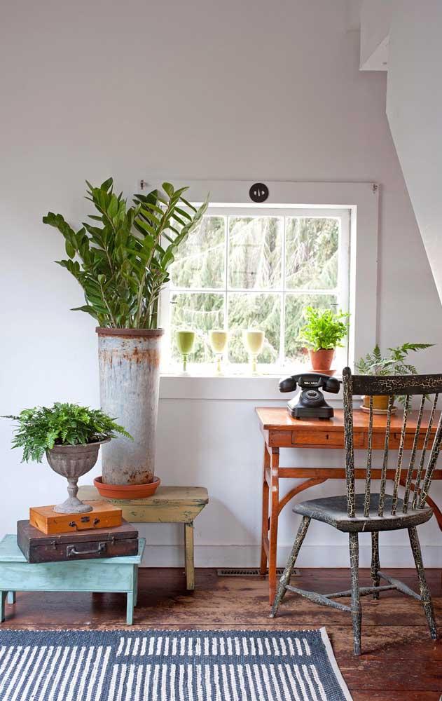 Esse home office retrô com influência Shabby Chic apostou na beleza intensa da zamioculcas