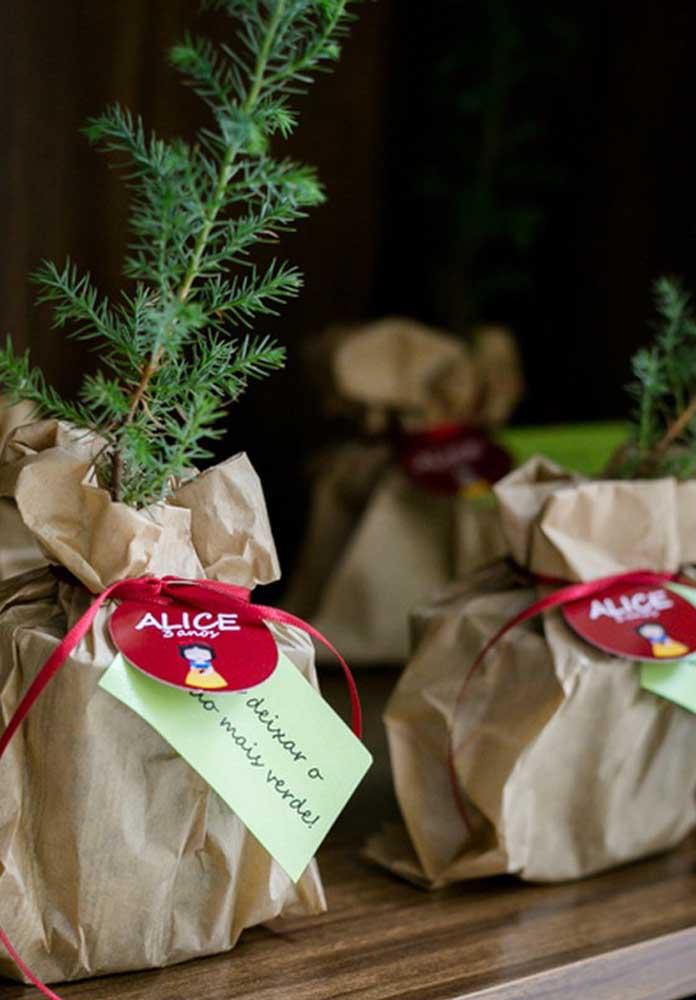 Que tal presentear os convidados com uma muda de planta e assim ajudar o mundo a ficar mais verde.