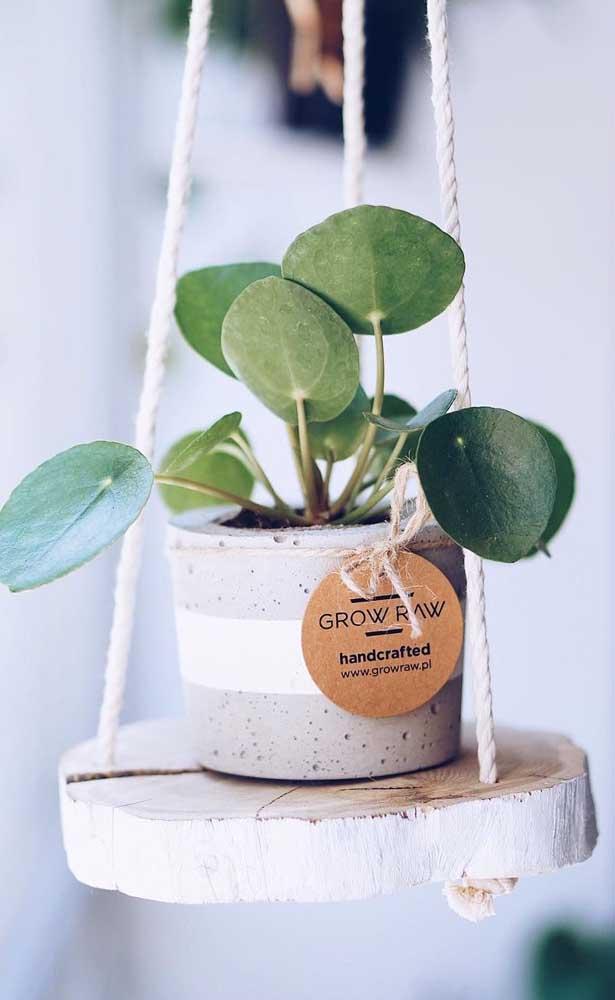 As plantinhas também podem ser consideradas uma forma de artesanato para vender.