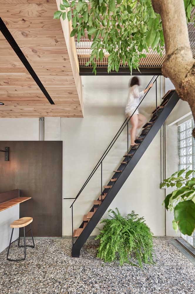 Olha como dá para fazer uma decoração embaixo da escada com plantas.