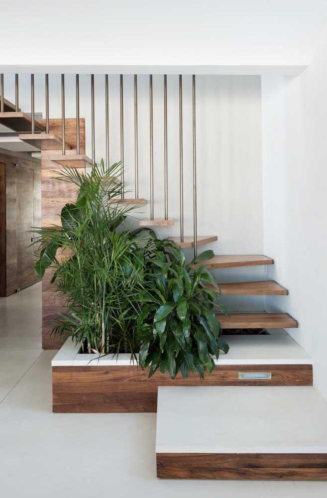 Cultive suas plantas embaixo da escada.