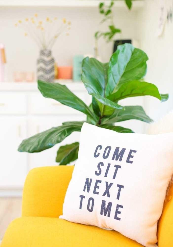 Usar frase é uma das principais opções para quem escolhe decorar com almofadas divertidas.