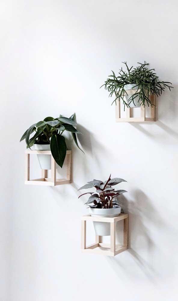 Você já tinha visto porta vasos como esses?