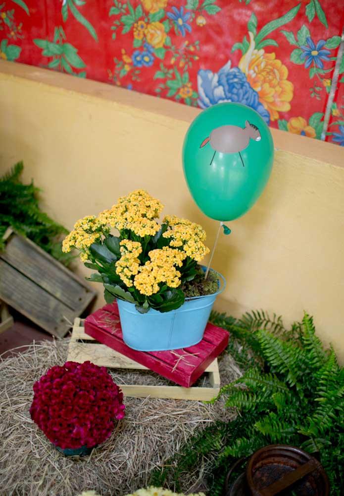 Um vaso com flores ou planta pode ser uma ótima opção de lembrancinha fazendinha para sua festa.