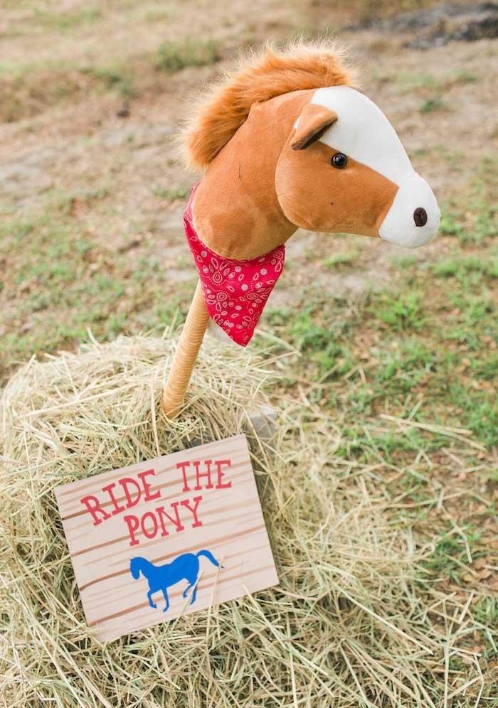 Se não tem cavalo de verdade, você pode decorar com um pônei de pelúcia.