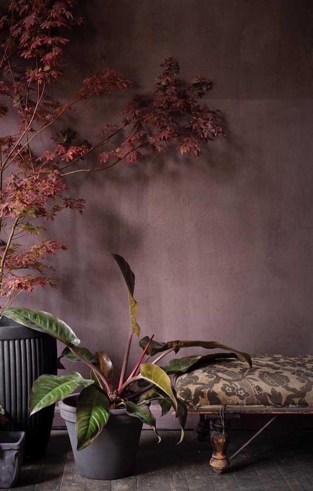 O marmorato pode ser aplicado em paredes externas da casa sem nenhum problema.