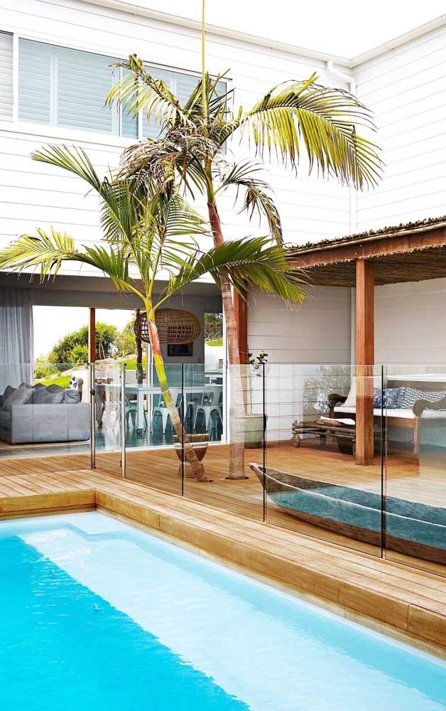A palmeira real é uma das mais usadas em ambientes externos como jardins, entradas e áreas de lazer.
