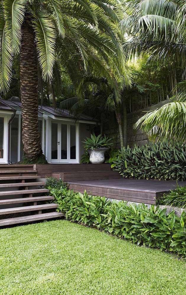 No jardim externo você pode usar o tipo de palmeira que você deseja.