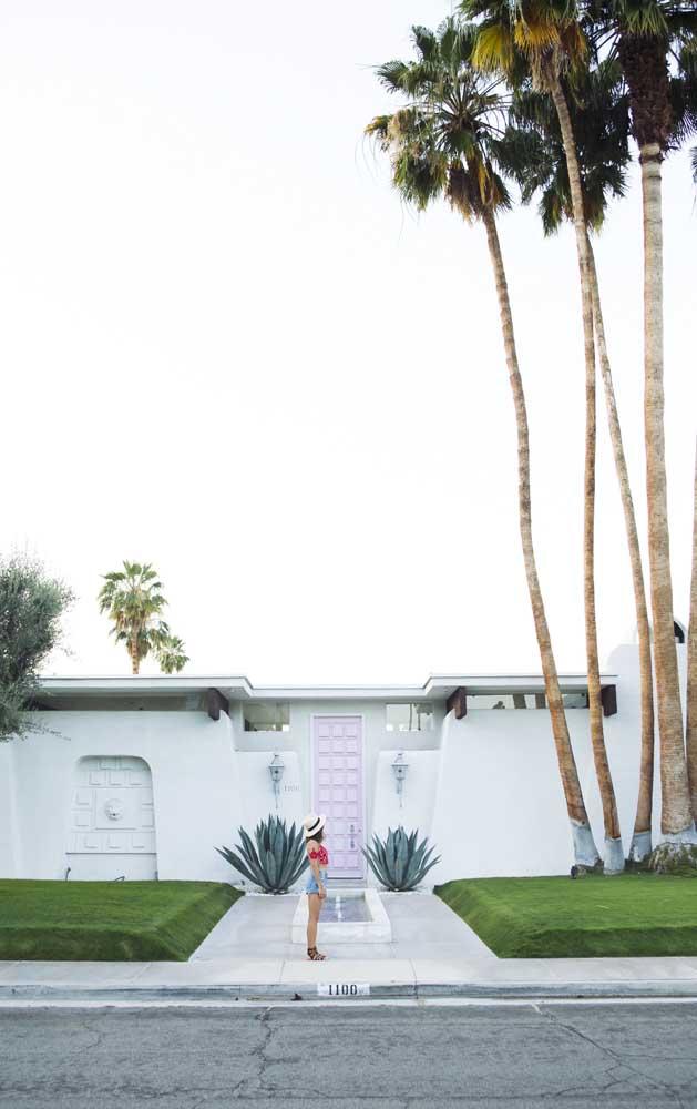 Esse tipo de palmeira fica perfeita para colocar na parte externa da casa, principalmente, na entrada.