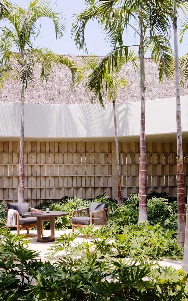 Olha que jardim fantástico você pode fazer com palmeiras do tipo imperial.