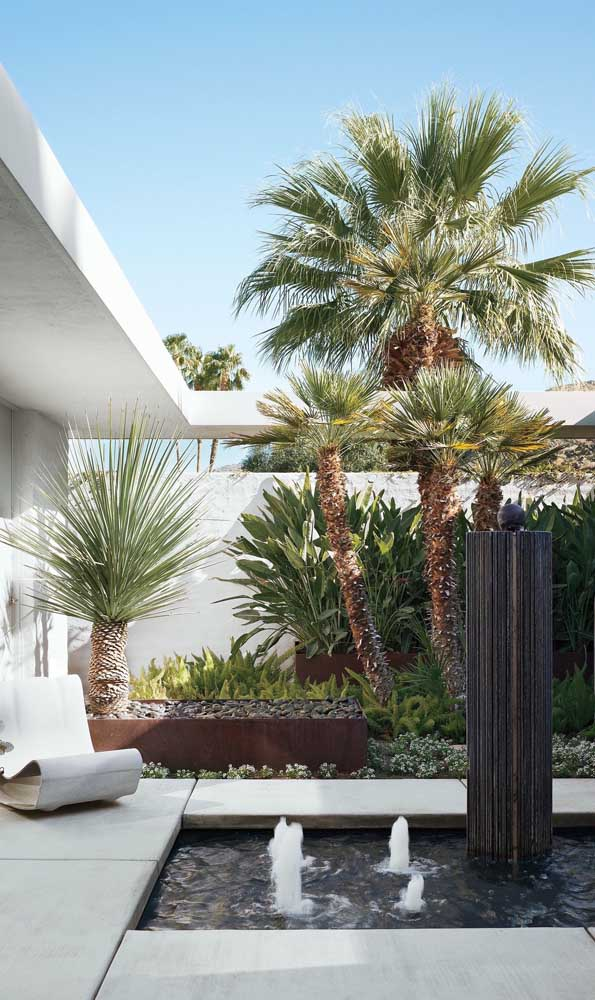 Dependendo do estilo de palmeira, é possível usar várias em ambientes pequenos.