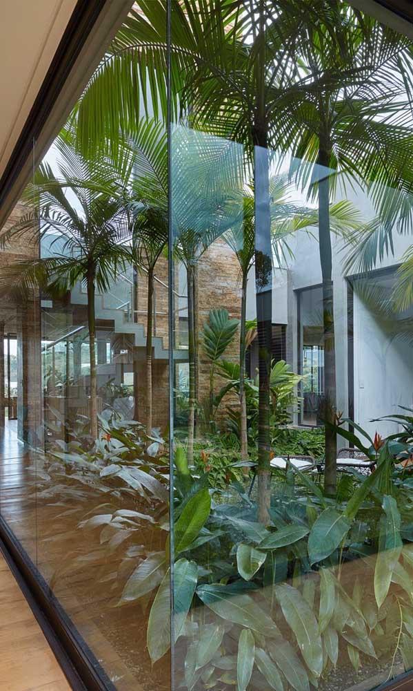 Se você quer manter uma palmeira de grande porte dentro de casa, pode usar esse modelo de jardim.