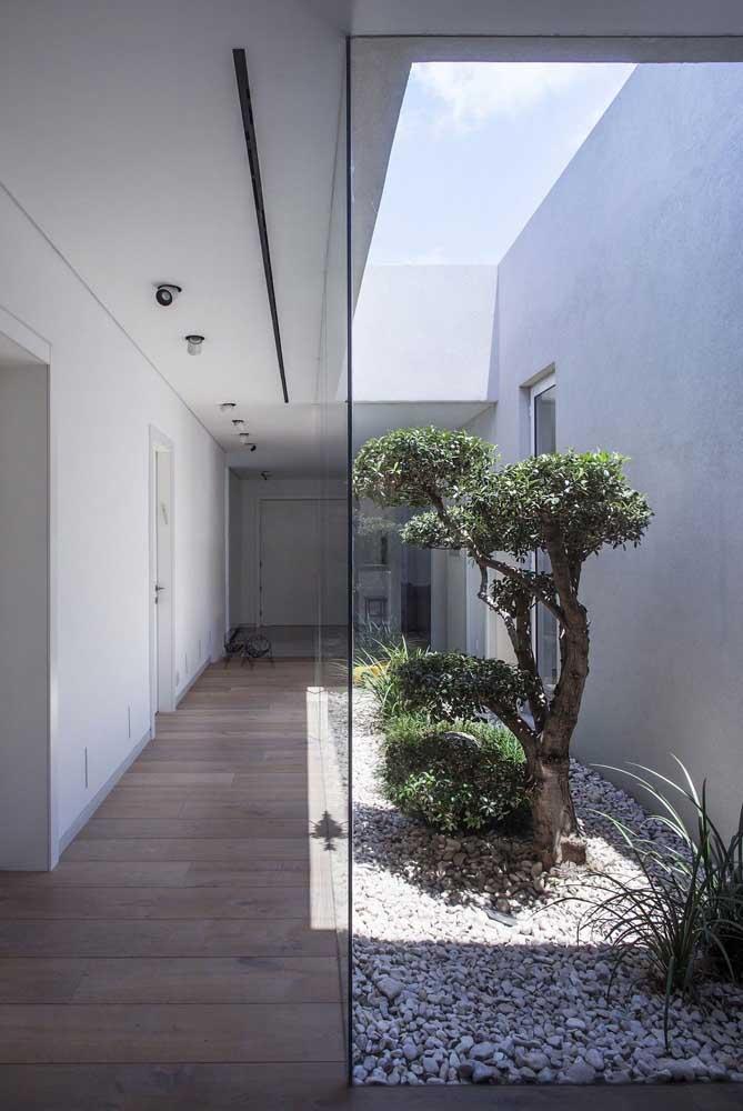 Algumas plantas são específicas para jardim japonês.