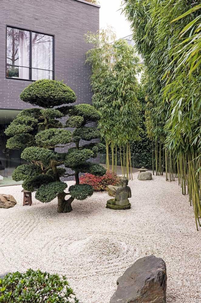 Já sabe como vai montar o seu jardim japonês?