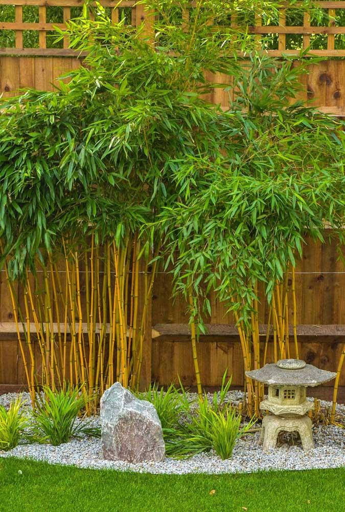 Não precisa fazer um jardim japonês enorme, basta um cantinho.