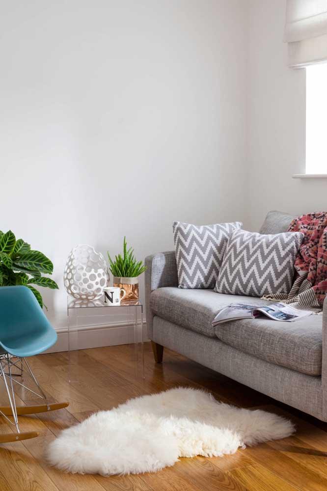 Coloque um tapete felpudo pequeno apenas na sala.