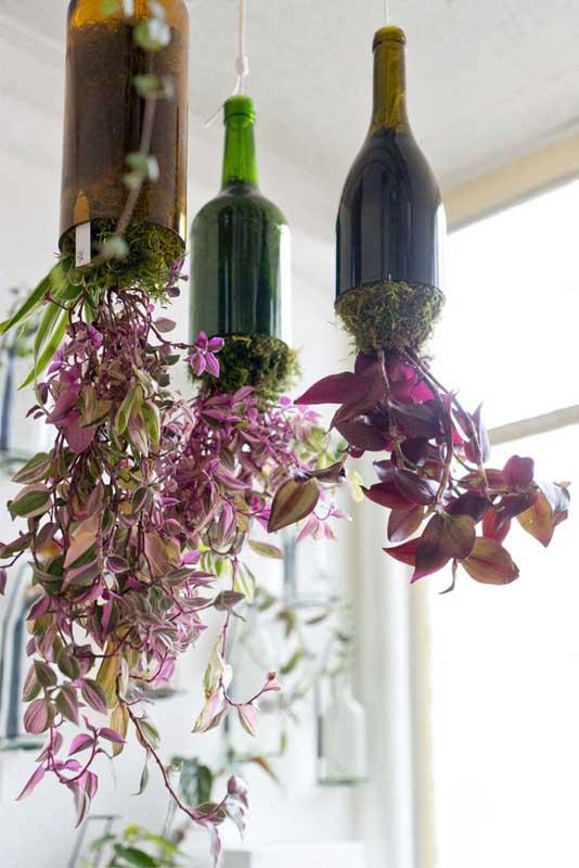 Por essa você não esperava: jardim suspenso nas garrafas de vidro