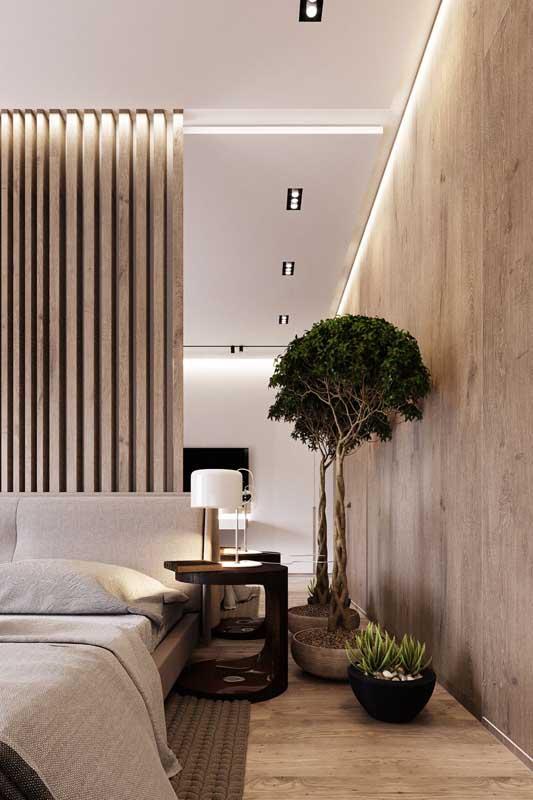 Um bonsai desse tamanho também é coisa de quarto de luxo