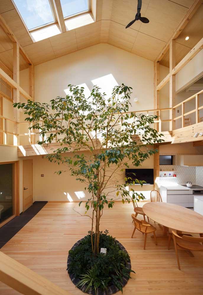 Casa moderna por dentro: madeira e plantas