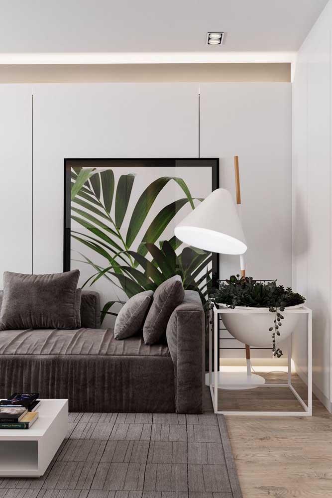 Plantas e luminária vivendo pacificamente por aqui
