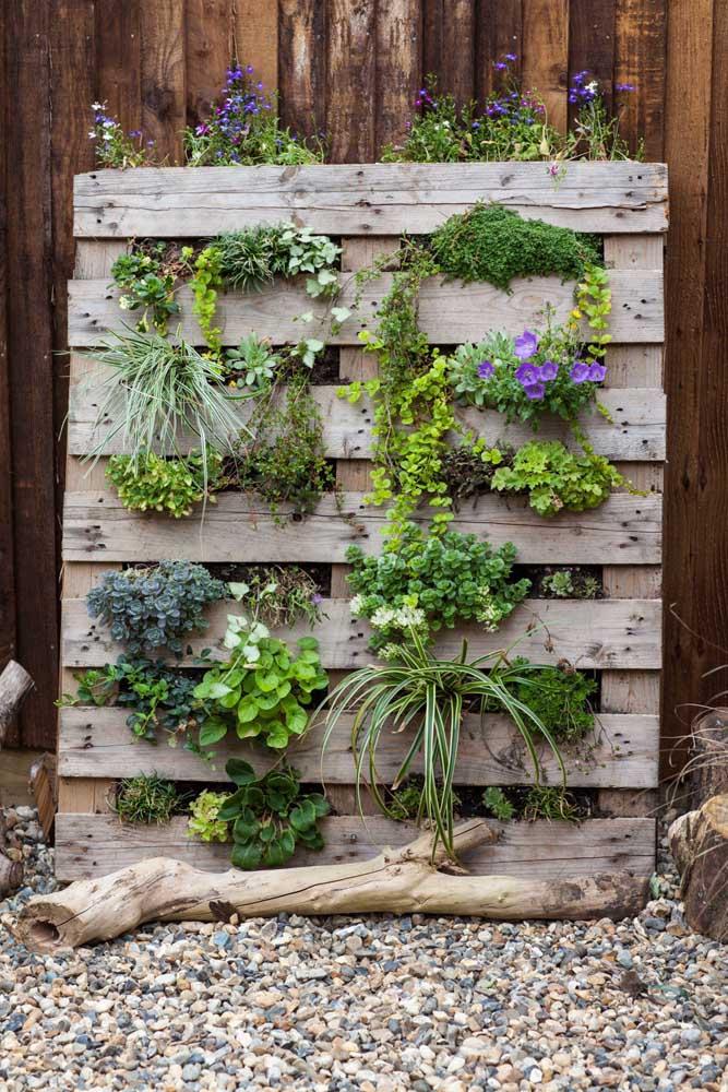 Quem resiste a um jardim vertical feito de pallet?