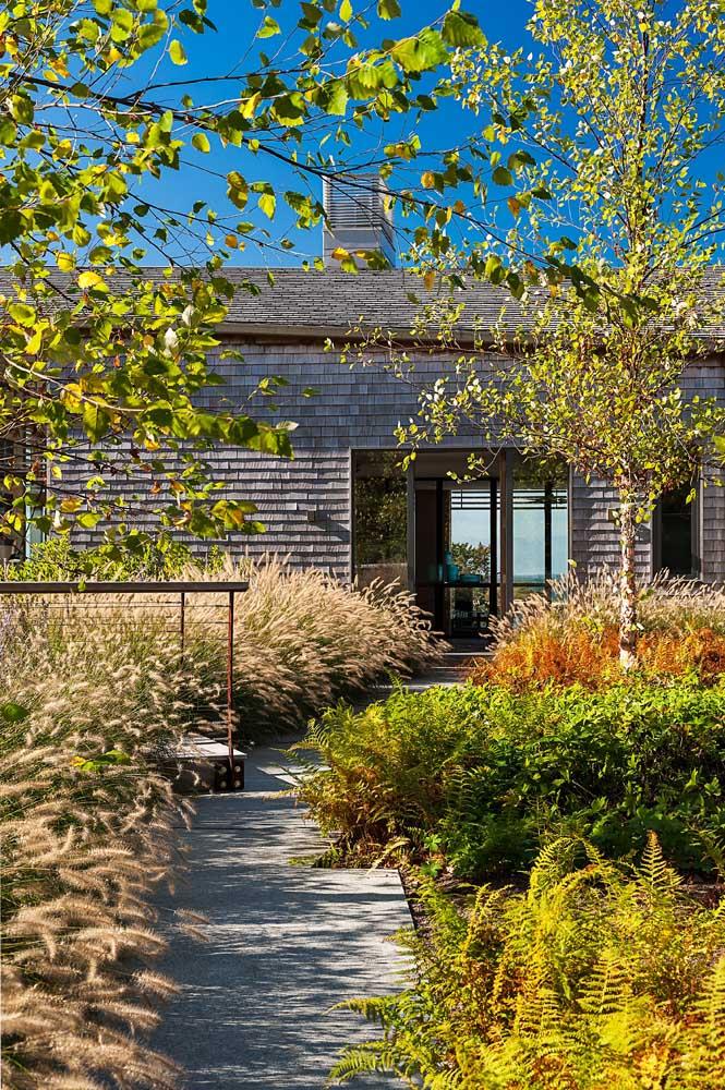 Decoração de jardim com caminho de concreto e plantas em diferentes tonalidades