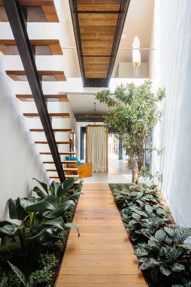 Jardim de inverno embaixo da escada. Use plantas de sombra para esse tipo de projeto