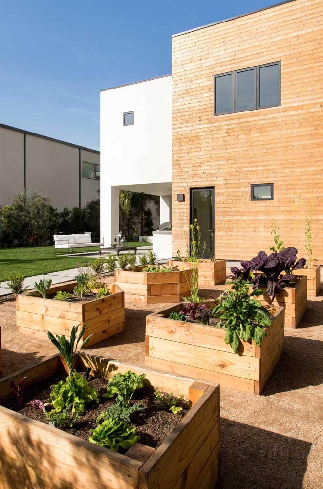 Um jardim que na verdade é horta!