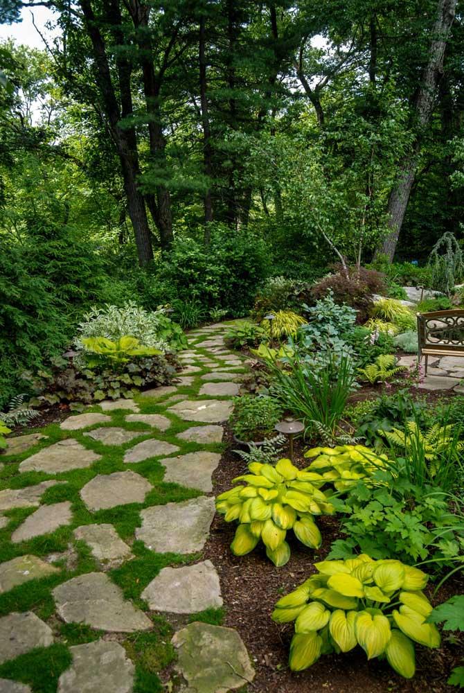 Já aqui é o estilo tropical que domina na decoração do jardim