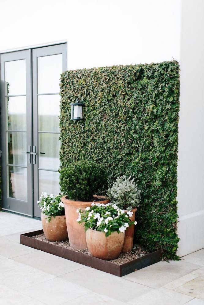 Mini jardim na entrada da casa. O destaque fica para o painel de trepadeiras
