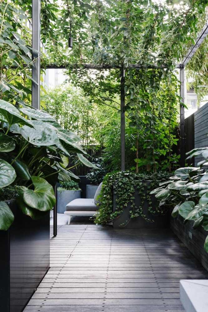 Decoração de jardim moderno com destaque para o deck de madeira e os canteiros elevados no mesmo tom