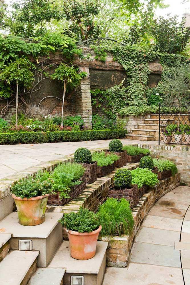 Aqui, temperos fazem parte da decoração do jardim