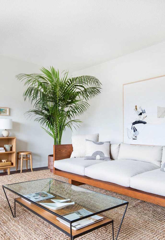 Sala branca com palmeira verde: o contraste perfeito!