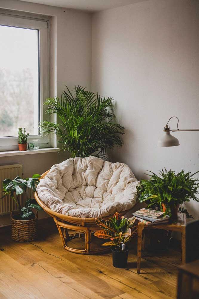Um mini oásis dentro de casa com a presença linda e maravilhosa da palmeira ráfis