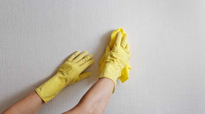 Como limpar parede suja: veja dicas essenciais e passo a passo fácil