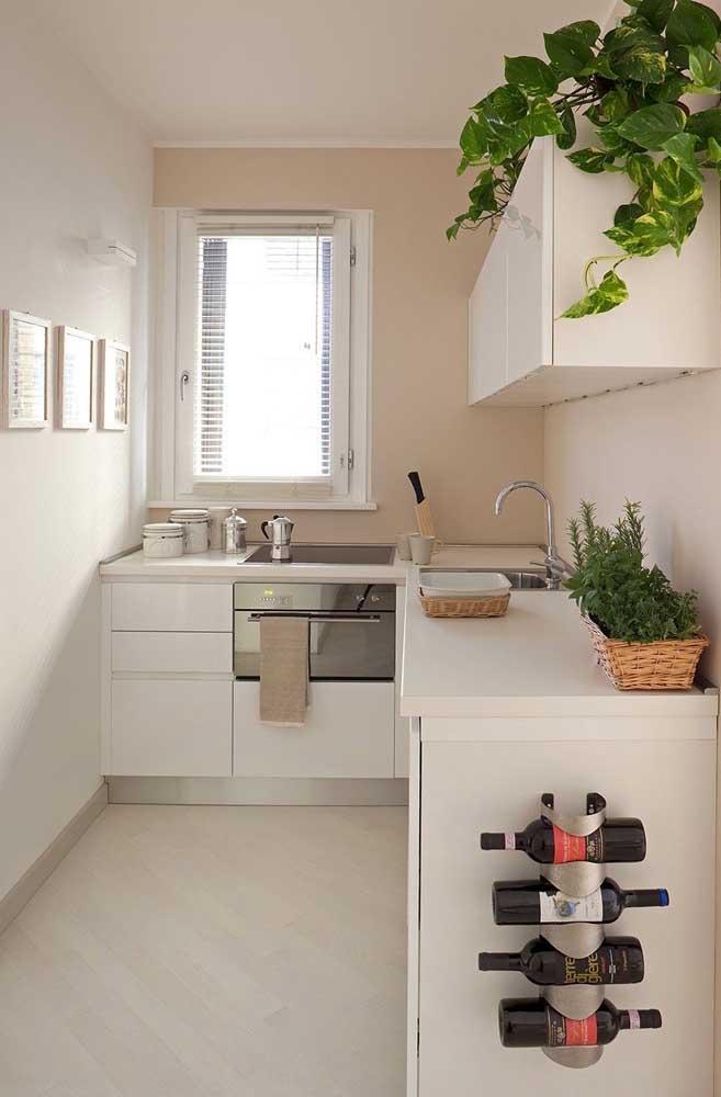 Plantas para a decoração da cozinha pequena em estilo corredor