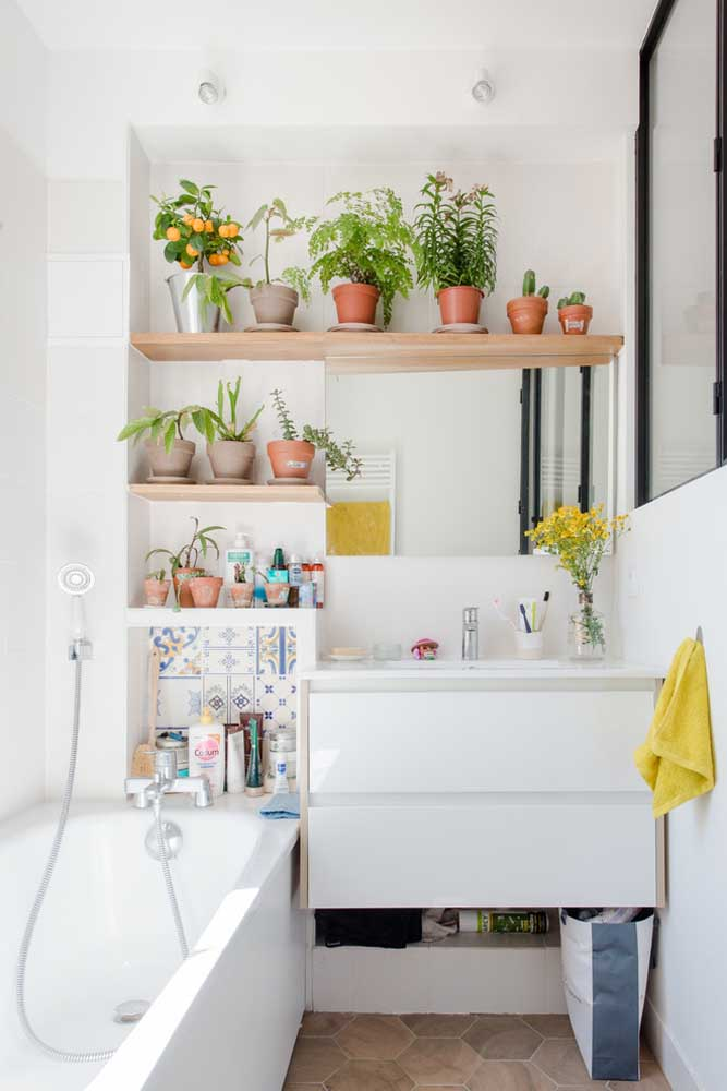 Banheira e plantas para um banheiro aconchegante e acolhedor