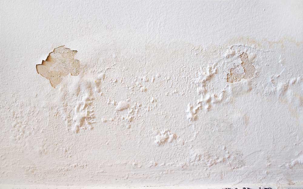Umidade na parede: Identifique o problema